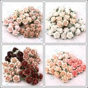 Mulberry Rose Collections