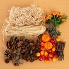 Harvest Festival Rustic Embellishment Collection