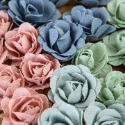 Linen RoseCollection